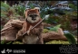 Preview: HOT TOYS | Star Wars Episode VI Movie Masterpiece Actionfigur 1/6 Wicket 15 cm