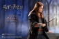 Preview: Harry Potter My Favourite Movie Actionfigur 1/6 Ginny Weasley 26 cm |Star Ace
